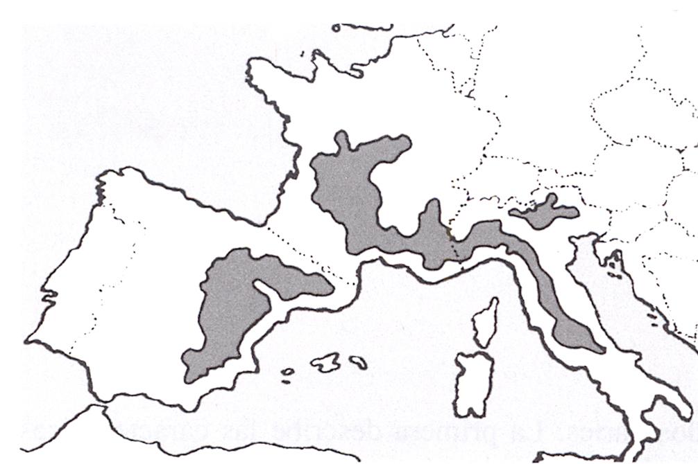 mapa-europa-trufas